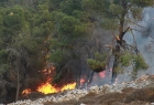 إطفائية بلدية نابلس تخمد حريقًا هائلًا جنوب غرب المدينة