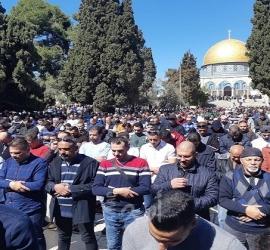 40 ألف مصلٍ يؤدون الجمعة في الأقصى