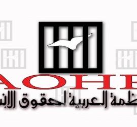 المنظمة العربية لحقوق الإنسان تدين العدوان الإسرائيلي على غزة