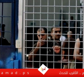 الأشقر: 544 أسير مؤبد ينتظرون صفقة وفاء الأحرار الثانية