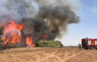 1000 حريق خلال أسبوع بسبب موجة الحر في الضفة