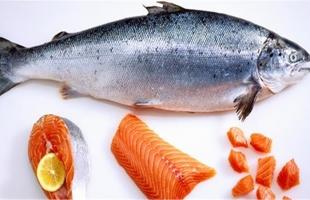 فوائد الصحية لسمك السلمون المعلب