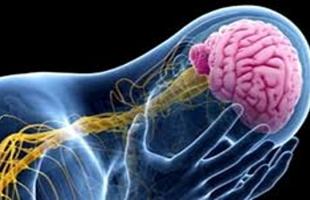 7 أعراض لا تتجاهلها إذا تعرضت لإصابة فى الرأس