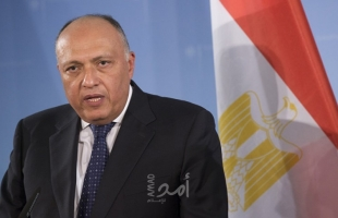 وزير الخارجية المصري يطالب بخروج القوات الأجنبية والمرتزقة من ليبيا