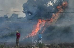 اندلاع عدة حرائق في أحراش بلدات إسرائيلية بفعل بالونات غزة