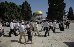"""عشرات المستوطنين يقتحمون """"الأقصى"""" بحماية شرطة الاحتلال"""