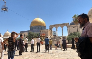 مجلس الافتاء الفلسطيني يحذر من عواقب اقتحام المسجد الأقصى الأحد المقبل