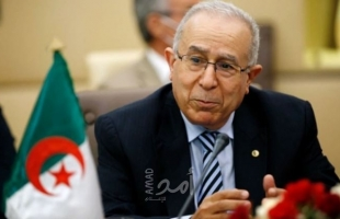 اتصالات جزائرية سعودية مصرية تتناول الأوضاع على الساحة المغاربية