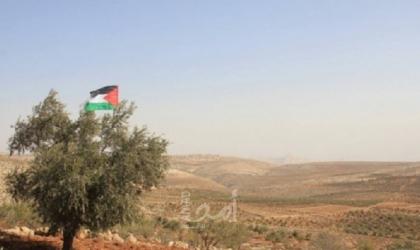 """دغلس لـ""""أمد"""": سلطات الاحتلال منحت المستوطنين الضوء الأخضر لسرقة محصول الزيتون"""
